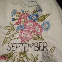 September - Aster